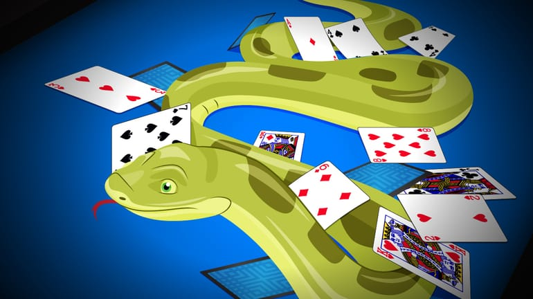 snake sliding through several playing cards
